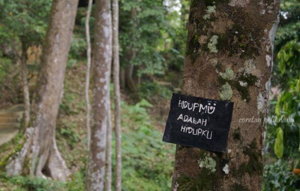 Hidupmu Adalah Hidupku, Lindungi Tanaman Hutan Kita.