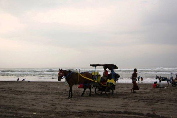 Andong di Pantai laut Selatan Jogjakarta, Parangtritis.